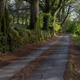 The road to Okehampton Golf Course