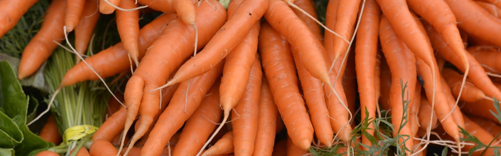 Wie mache ich eine Karottenpfanne?